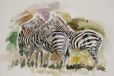 Kenyan Watercolor of Zebras